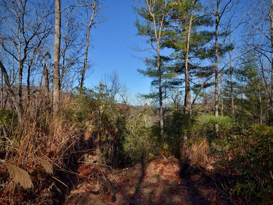 Lot 27 -29  Laurel Cove Retreat None, Etowah, NC - USA (photo 5)