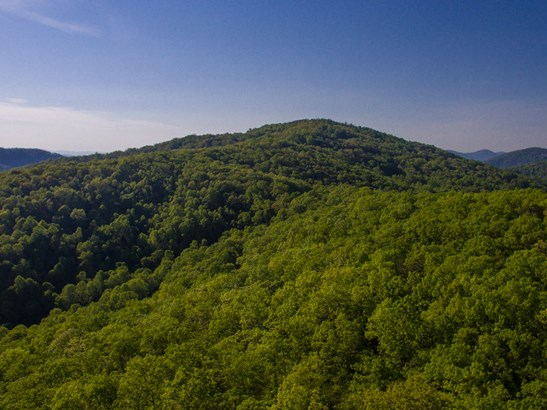 182 +/- Acres  Bob Barnwell Road, Asheville, NC - USA (photo 4)