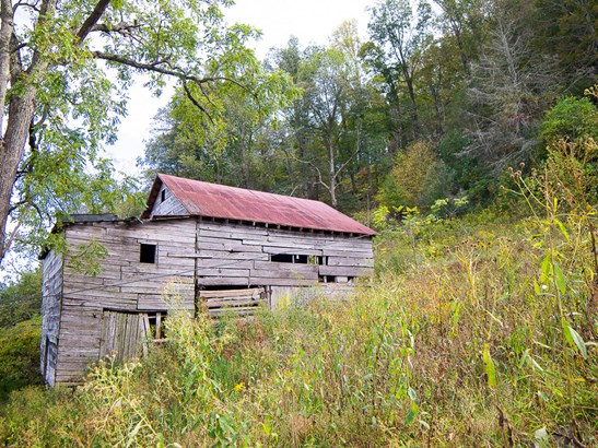 1641  Lickskillet Road, Burnsville, NC - USA (photo 4)