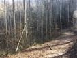 1124 Indian Creek Road, Burnsville, NC - USA (photo 1)
