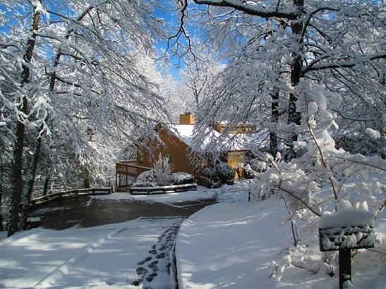 157  Bluebird Road, Lake Lure, NC - USA (photo 2)