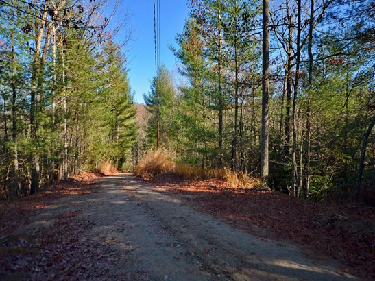 Lot 13-15 & 30-31  Laurel Cove Retreat None, Etowah, NC - USA (photo 5)