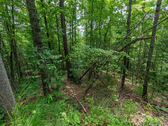 Lot #11  Quail Ridge Road, Mars Hill, NC - USA (photo 3)