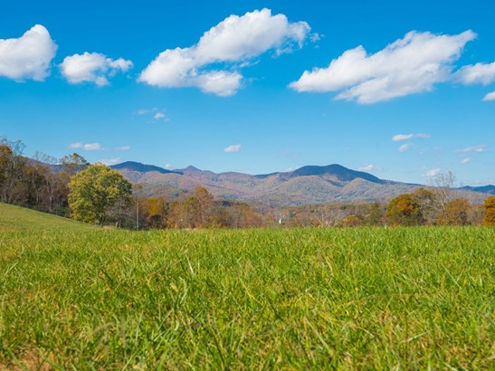 193  Youngs Cove Road, Candler, NC - USA (photo 3)