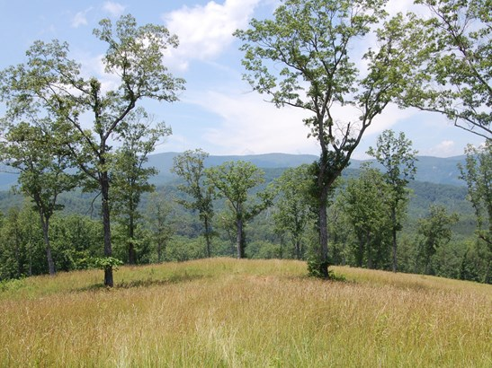 125 Acres  Hwy 276 None, Cleveland, NC - USA (photo 1)