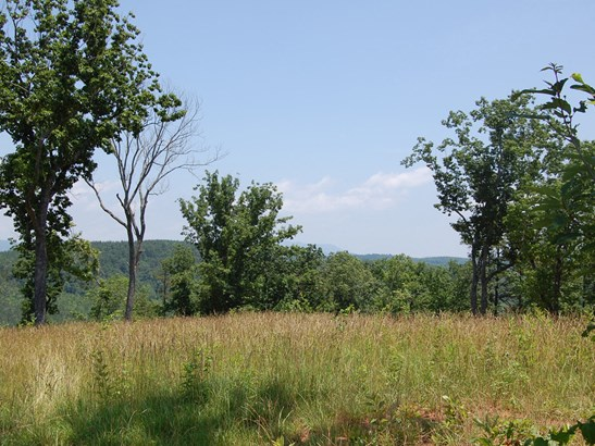 125 Acres  Hwy 276 None, Cleveland, NC - USA (photo 2)