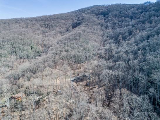 109 Aster Ridge Trail, Swannanoa, NC - USA (photo 3)