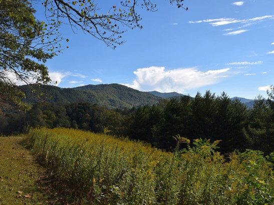 221 Battle Creek Drive, Green Mountain, NC - USA (photo 2)
