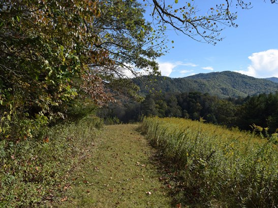 221 Battle Creek Drive, Green Mountain, NC - USA (photo 3)