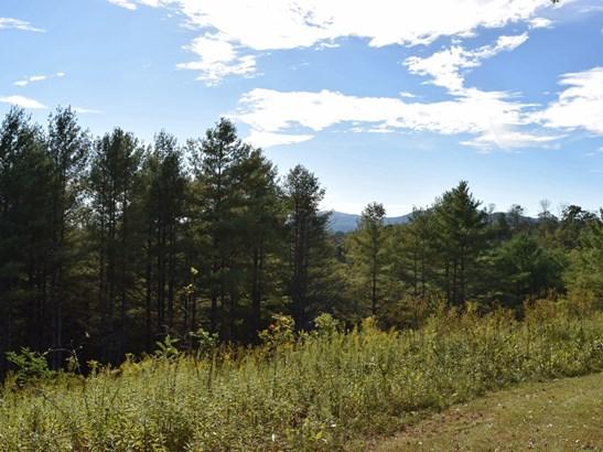 221 Battle Creek Drive, Green Mountain, NC - USA (photo 4)