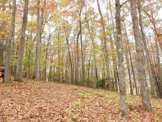 24  Bear Flower Trail, Arden, NC - USA (photo 5)