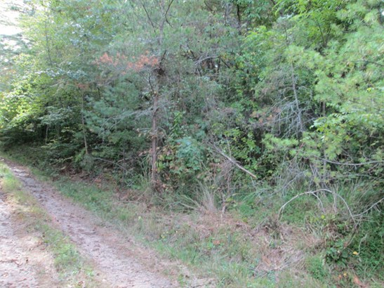 Lot #47  Woodhaven Road, Mars Hill, NC - USA (photo 2)