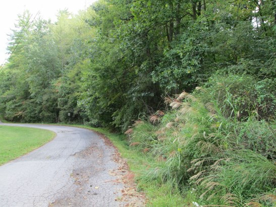 Lot #47  Woodhaven Road, Mars Hill, NC - USA (photo 5)