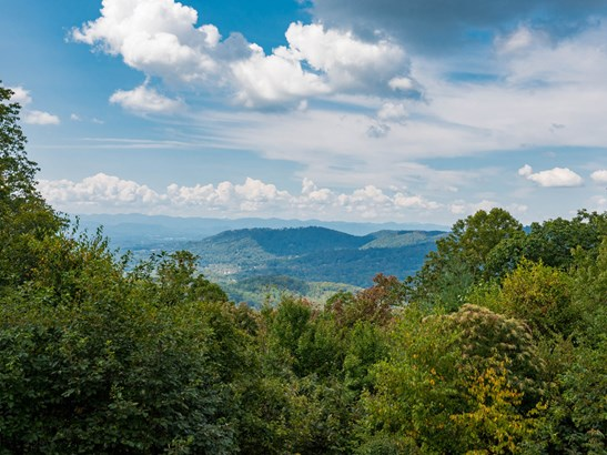 145 Big Spring Drive, Asheville, NC - USA (photo 2)