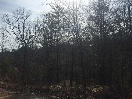 386  Bishop Lane, Mill Spring, NC - USA (photo 1)
