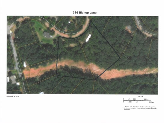 386  Bishop Lane, Mill Spring, NC - USA (photo 3)