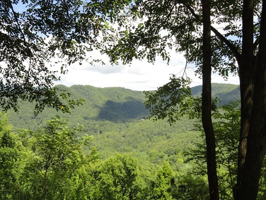 25  Crockett Ridge Road, Black Mountain, NC - USA (photo 1)