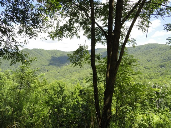 25  Crockett Ridge Road, Black Mountain, NC - USA (photo 5)