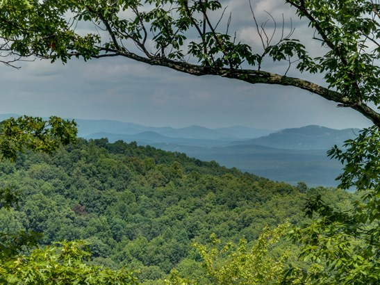 15  Gamelands Trail, Saluda, NC - USA (photo 2)