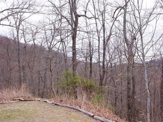 109  Ladys Fern Trail, Laurel Park, NC - USA (photo 2)
