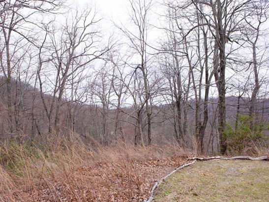 109  Ladys Fern Trail, Laurel Park, NC - USA (photo 3)