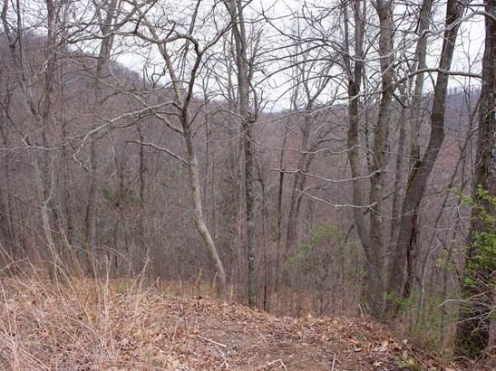 109  Ladys Fern Trail, Laurel Park, NC - USA (photo 4)