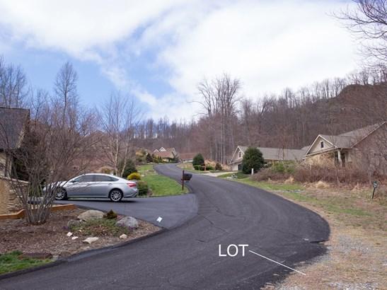 109  Ladys Fern Trail, Laurel Park, NC - USA (photo 5)