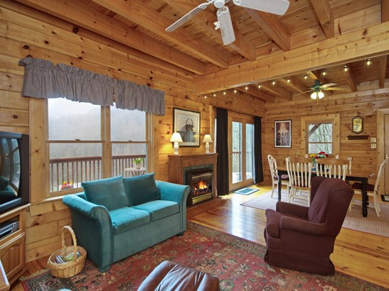 8020  Meadow Fork Road, Hot Springs, NC - USA (photo 3)