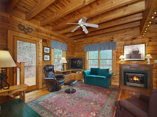 8020  Meadow Fork Road, Hot Springs, NC - USA (photo 4)