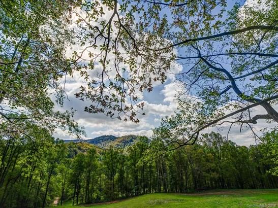 Lot 7  Powder Springs Trail, Arden, NC - USA (photo 4)