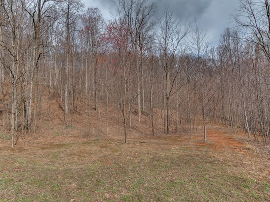 Lot 119  Chesterfield Drive, Mill Spring, NC - USA (photo 2)