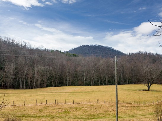 59  Chestnut Hill Road, Black Mountain, NC - USA (photo 3)