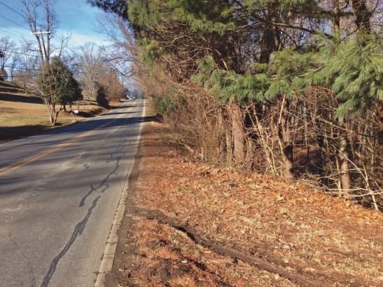 99999 Mount Carmel Road, Asheville, NC - USA (photo 4)