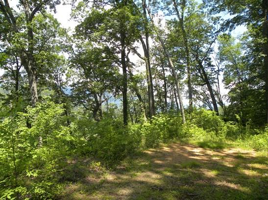 0  Jonathan Creek Road, Waynesville, NC - USA (photo 3)