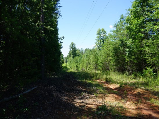 0  Us Highway 64 Highway, Rutherfordton, NC - USA (photo 4)