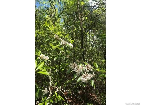 2301  Tranquility Trail, Morganton, NC - USA (photo 5)