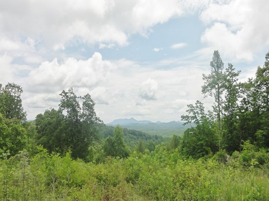 Lot 24  Falkirk Way , Zirconia, NC - USA (photo 4)