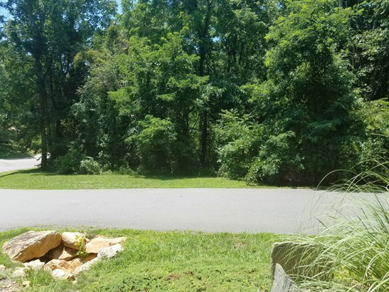 6  Lily Hill Road, Swannanoa, NC - USA (photo 2)