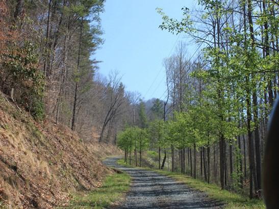 0  Shoal Creek Road, Burnsville, NC - USA (photo 3)