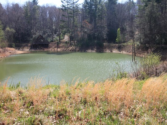 0  Shoal Creek Road, Burnsville, NC - USA (photo 4)