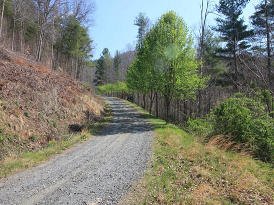 0  Shoal Creek Road, Burnsville, NC - USA (photo 5)