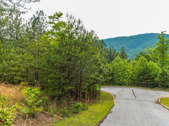 Lot 23  Monteith Place, Mill Spring, NC - USA (photo 2)