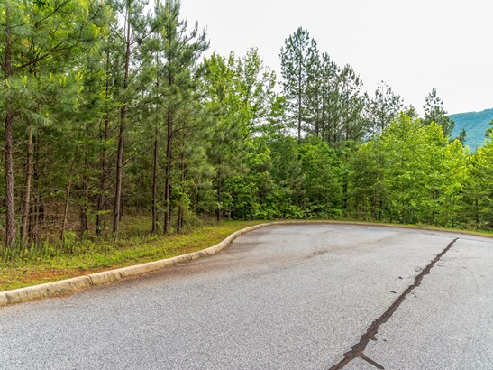 Lot 23  Monteith Place, Mill Spring, NC - USA (photo 3)