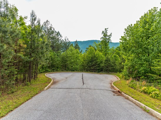 Lot 23  Monteith Place, Mill Spring, NC - USA (photo 5)