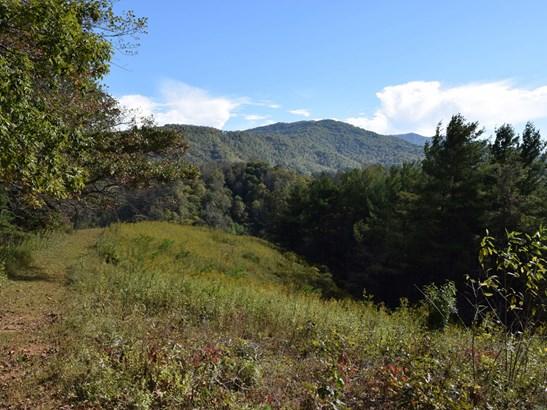 221  Battle Creek Drive, Green Mountain, NC - USA (photo 5)