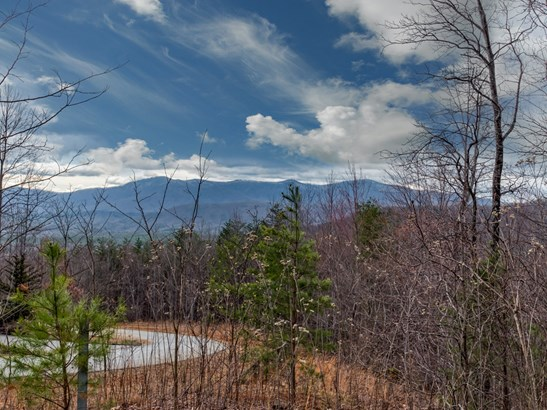 Lot 161  Cherry Hills Drive, Mill Spring, NC - USA (photo 1)