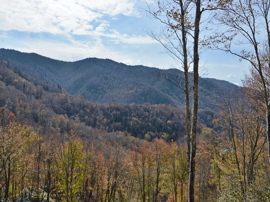 137 Green Mountain Road, Maggie Valley, NC - USA (photo 4)