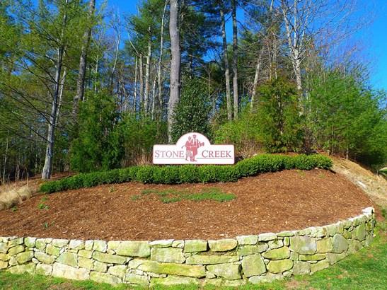 141 Chattooga Run, Hendersonville, NC - USA (photo 3)