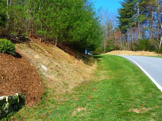 141 Chattooga Run, Hendersonville, NC - USA (photo 4)
