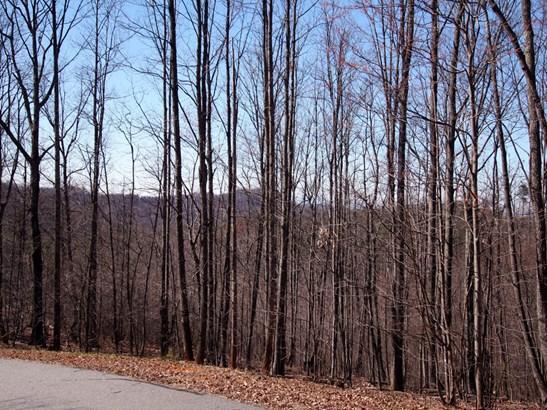 Lot 100  Sky Ridge Drive, Bostic, NC - USA (photo 2)